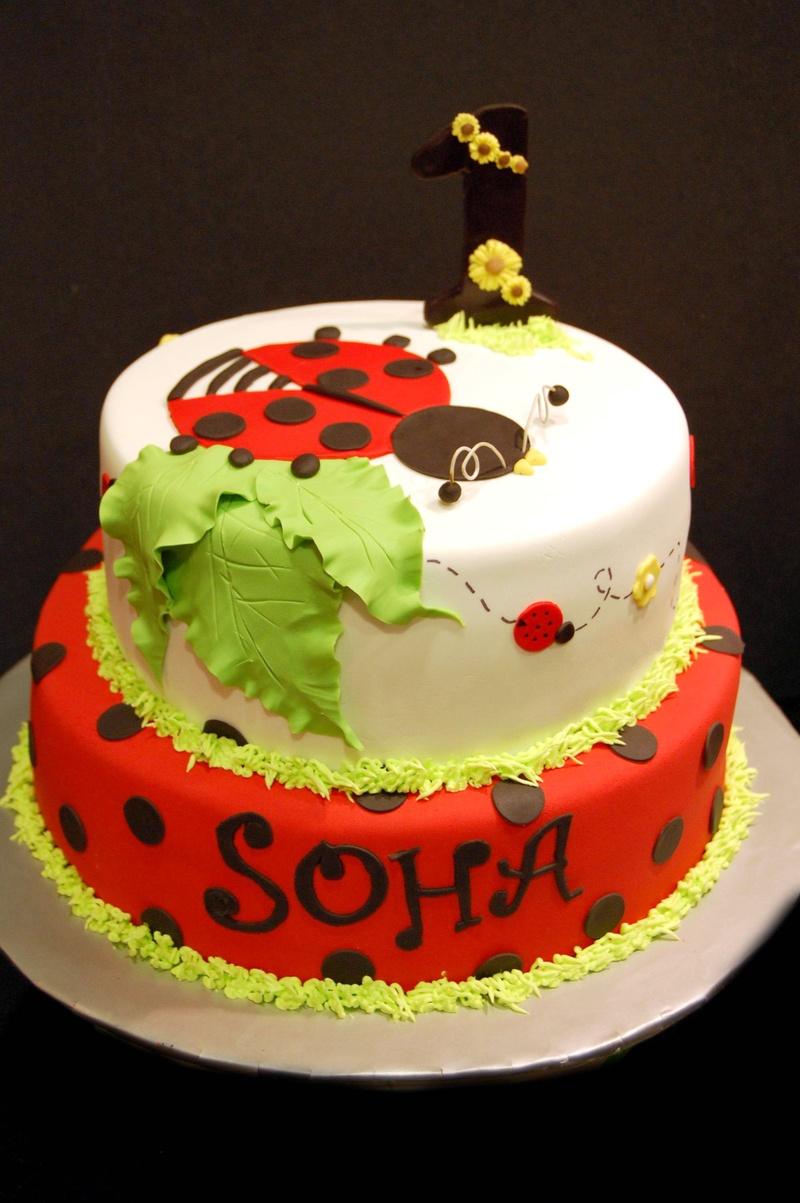 Ladybug themed cake